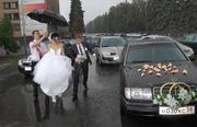 Видеооператор, Фотограф, Тамада На Свадьбу в Пензе Т:8-927-385-17-09