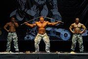 Силовое шоу в Волгограде